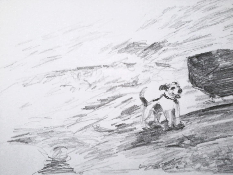 Marie Désert - Chien à la mer